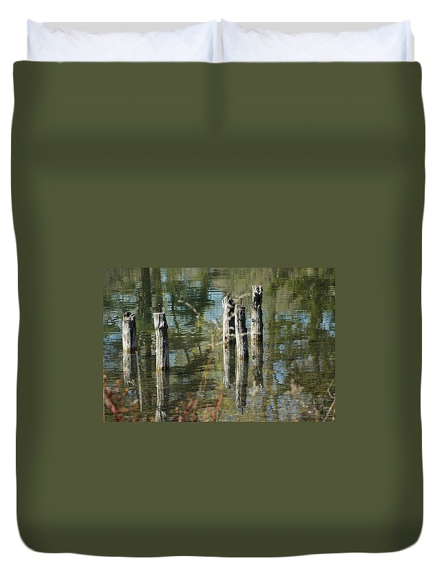 Landscapes Duvet Cover featuring the photograph The Old Swimming Hole by LeeAnn McLaneGoetz McLaneGoetzStudioLLCcom