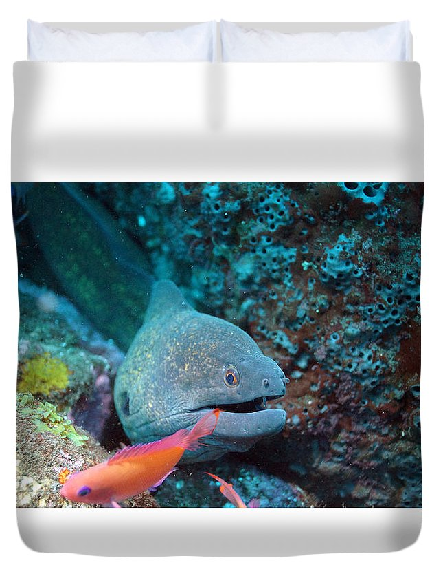 Duvet Cover featuring the photograph The One That Got Away by Todd Hummel