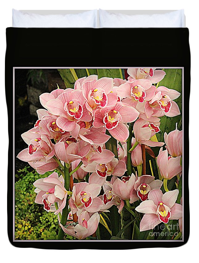 Orchid Duvet Cover featuring the photograph The Orchid Garden by Dora Sofia Caputo Photographic Design and Fine Art