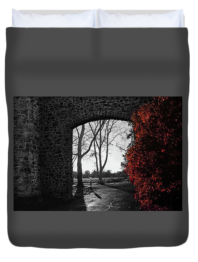 Trees Duvet Cover featuring the photograph The Other Side by Janice Mezzacappa