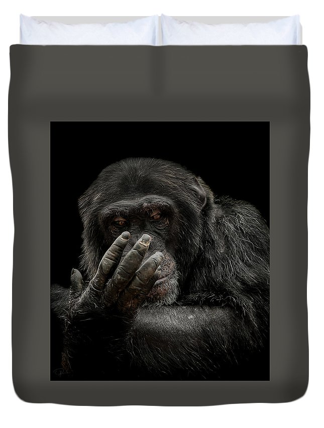 Chimpanzee Duvet Cover featuring the photograph The Palm Reader by Paul Neville