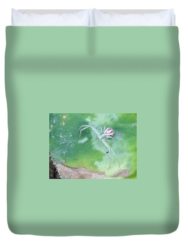 Flower Crab Spider Duvet Cover featuring the photograph The Patient Ambush Hunter by Rhiannon Amaya