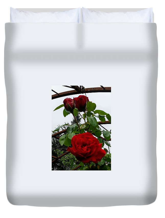 Botanical Flower's Nature Duvet Cover featuring the photograph The peaceful place 7 by Valerie Josi
