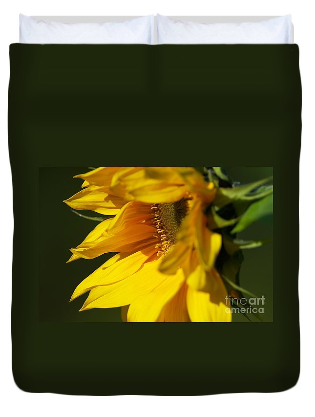 Sunflower Duvet Cover featuring the photograph The Promise by Sharon Talson