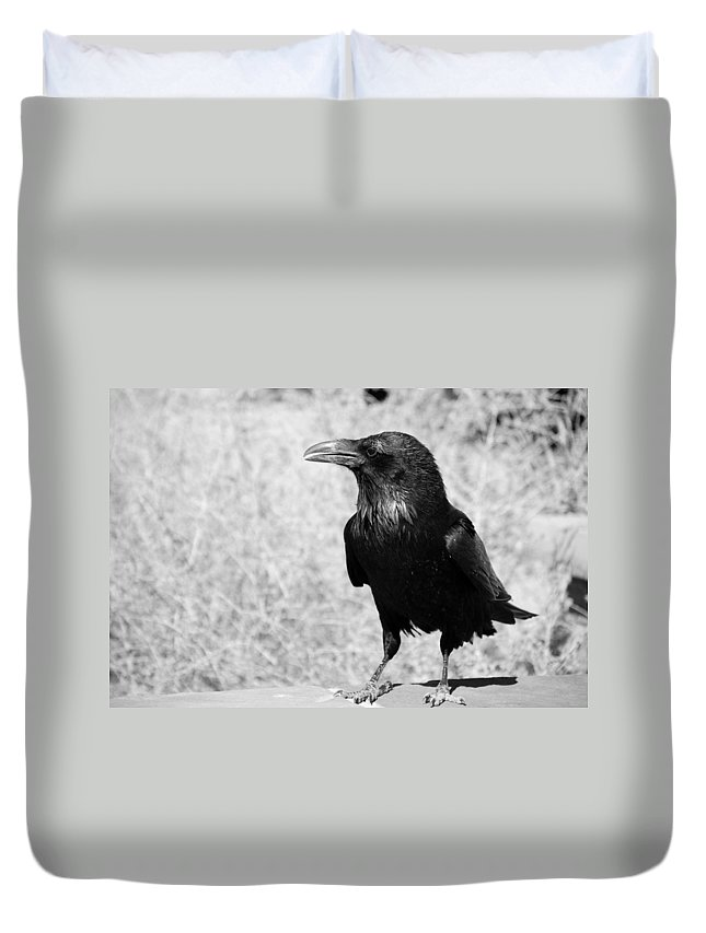 Raven Duvet Cover featuring the photograph The Raven by Susanne Van Hulst