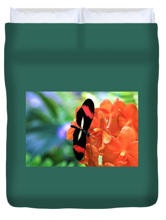 Butterfly Duvet Cover featuring the photograph The Red Postman 1 by Kristina Jones