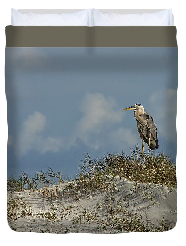 Amelia Island Photographer Duvet Cover featuring the photograph The Regal Great Blue Heron by Paula Porterfield-Izzo