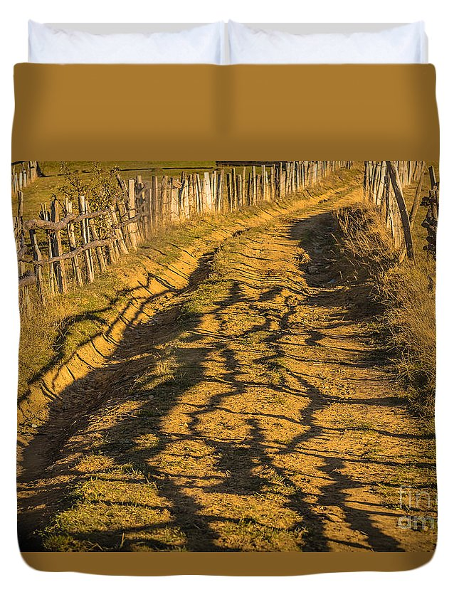 Landscape Duvet Cover featuring the photograph The Road To The Pasture by Lyudmila Prokopenko