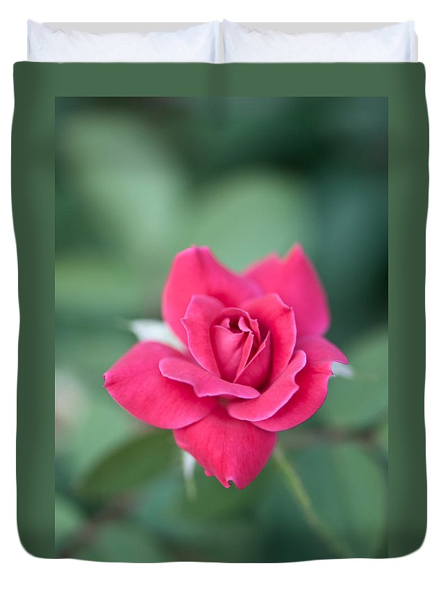 Floral Duvet Cover featuring the photograph The Rose by Betty LaRue