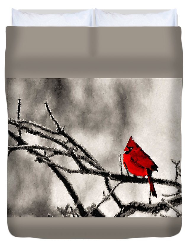 Cardinal Duvet Cover featuring the photograph The Sentinel by Kristin Elmquist