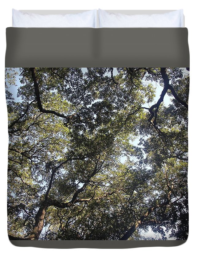 Nature Duvet Cover featuring the photograph The Shade by Dareyon Blade