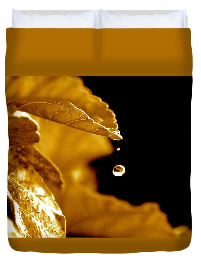 Raindrop Duvet Cover featuring the photograph The Small Follower by Kimberly Reeves