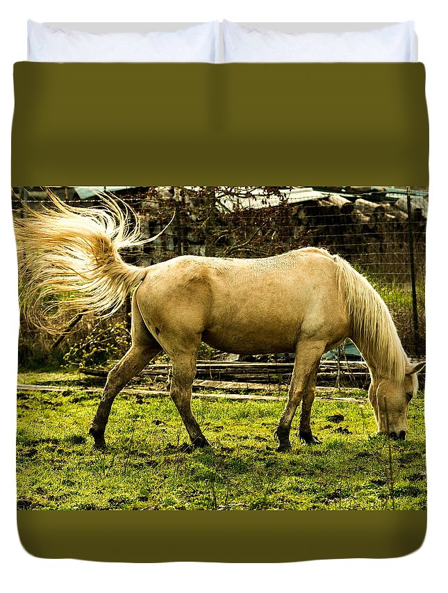 Fence Duvet Cover featuring the photograph The Spring Fling by Laddie Halupa