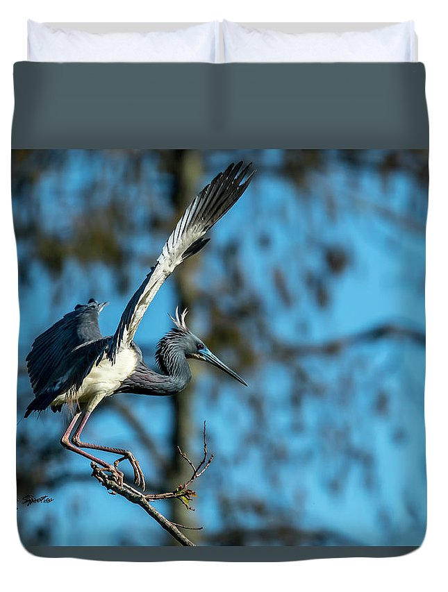 Nesting Duvet Cover featuring the photograph The Stage Entry by Marvin Spates