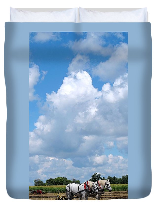 Horse Duvet Cover featuring the photograph The Team by Ian MacDonald