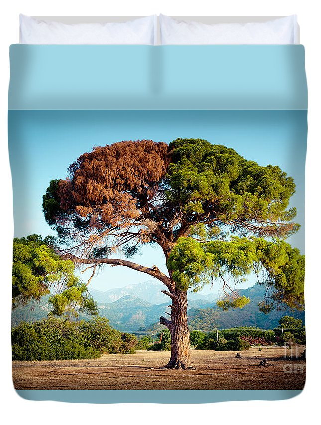 Water Duvet Cover featuring the photograph The Tree Of Life And Dead by Raimond Klavins