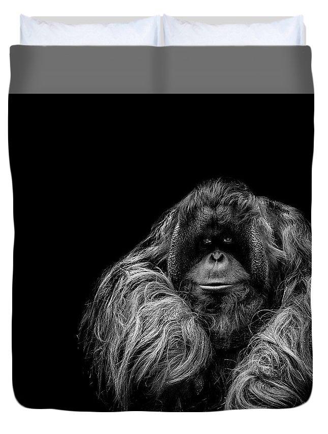 Orangutan Duvet Cover featuring the photograph The Vigilante by Paul Neville