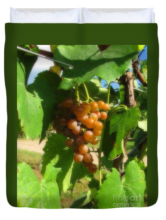 Grapes Duvet Cover featuring the photograph The Vineyard by September Stone