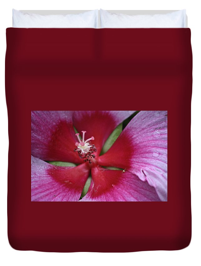 Hibiscus Duvet Cover featuring the photograph The Visitor by Teresa Mucha