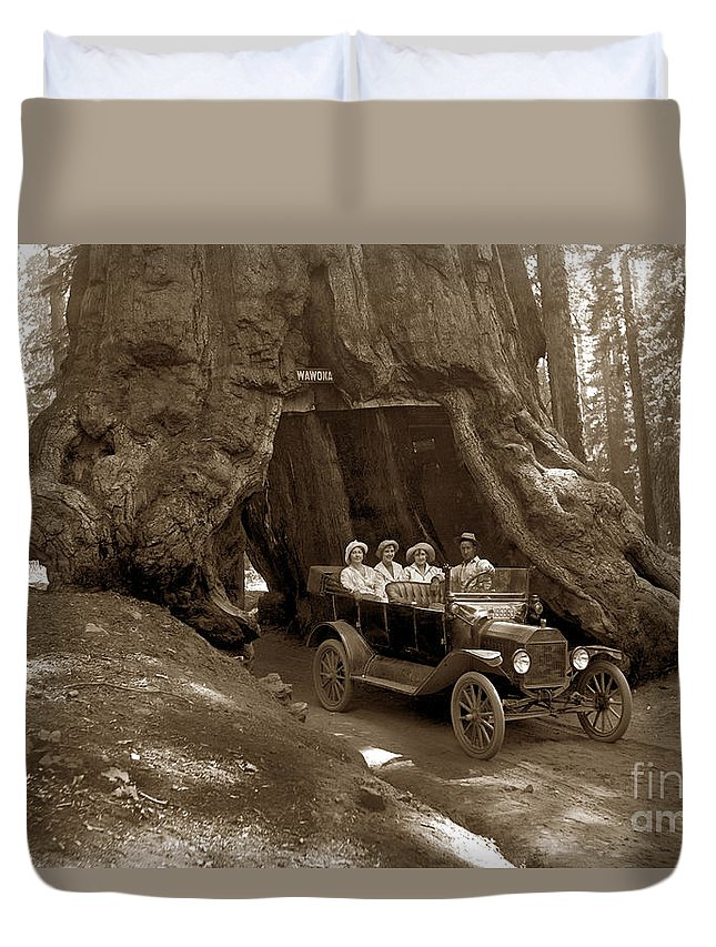 The Wawona Tunnel Tree Duvet Cover featuring the photograph The Wawona Tree Mariposa Grove, Yosemite Circa 1916 by California Views Archives Mr Pat Hathaway Archives