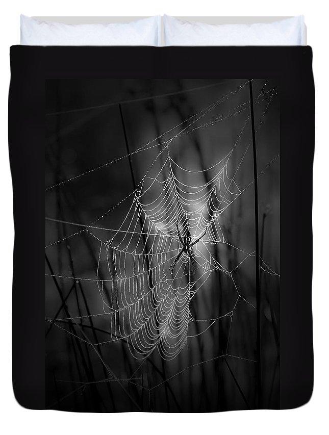 Spider Duvet Covers