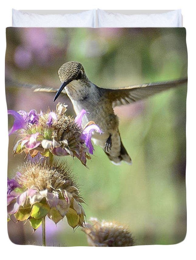 Hummingbird Duvet Cover featuring the photograph The Wonder Of Wings by Saija Lehtonen