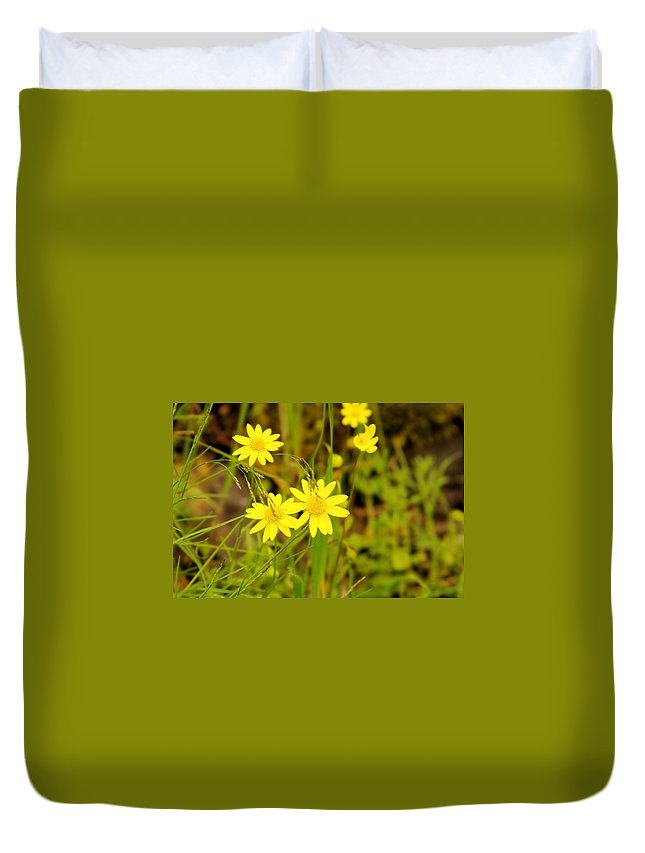 Flowers Duvet Cover featuring the photograph Thee Yellow Smiles by Jeff Swan