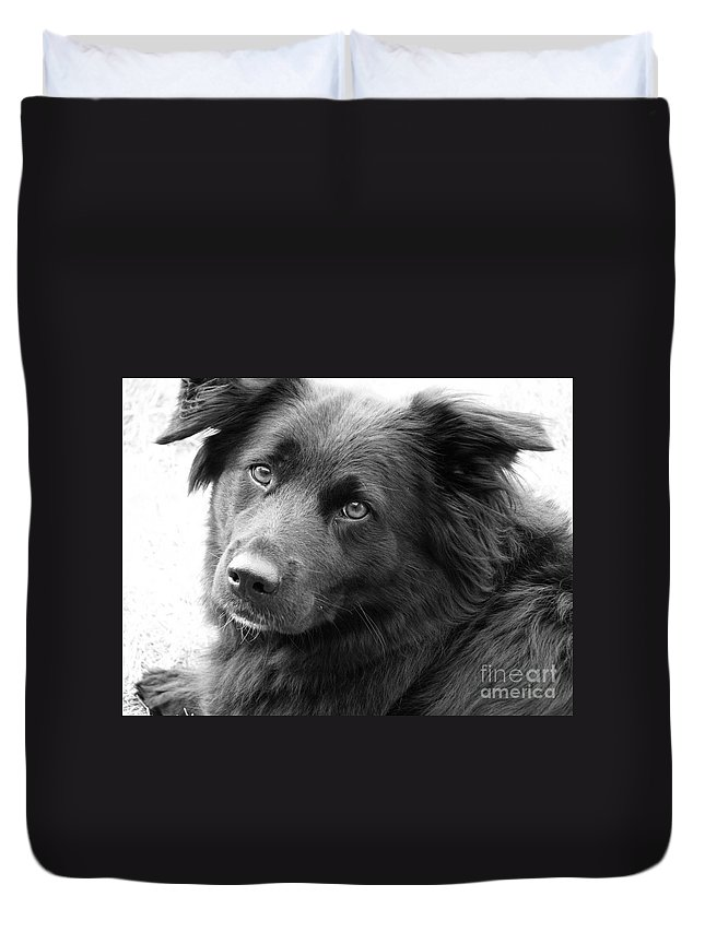 Dog Duvet Cover featuring the photograph Thinking by Amanda Barcon