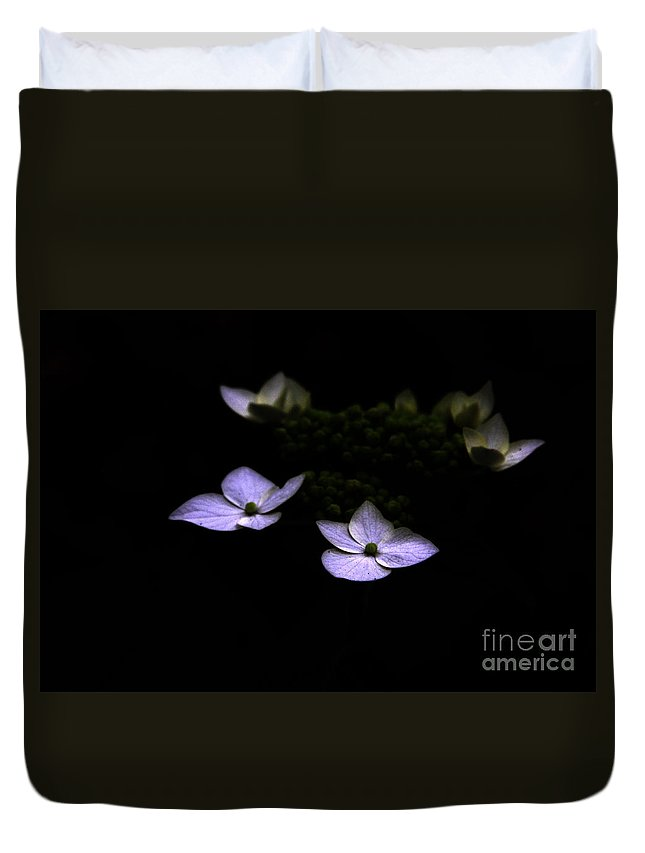 Hydrangea Duvet Cover featuring the photograph This Little Light Of Mine by Amanda Barcon