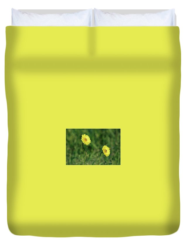 Colors Duvet Cover featuring the photograph This Little Light Of Mine by Burge Darwin
