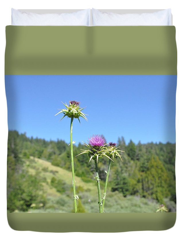 Landscape Duvet Cover featuring the photograph Thistle by Rachel Young