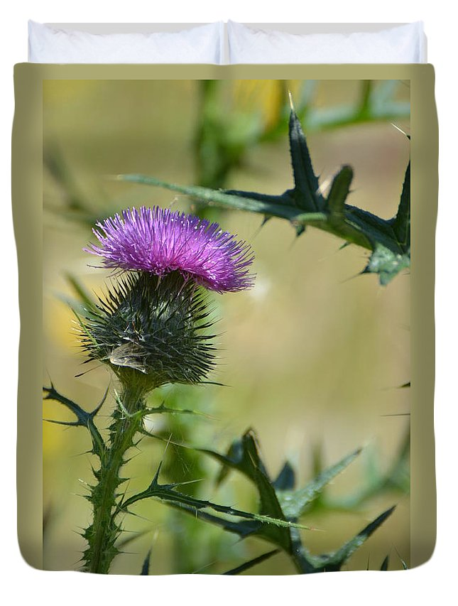 Thistle Duvet Cover featuring the photograph Thistle Spikes by Robin White