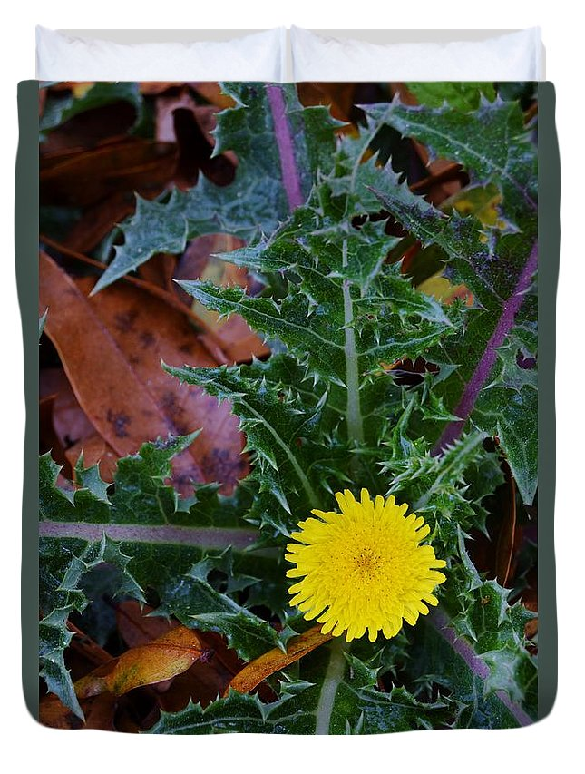 Thistle This Duvet Cover featuring the photograph Thistle This by Warren Thompson