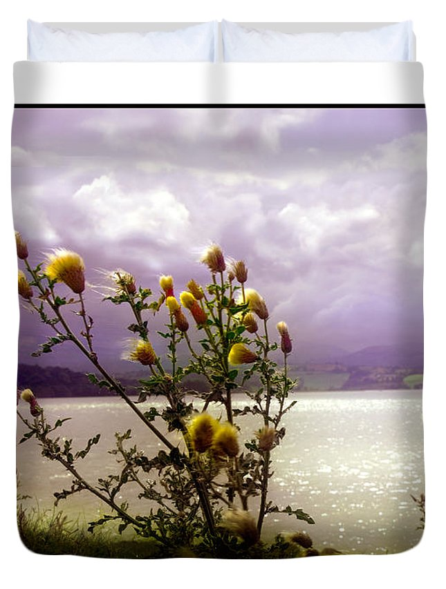 Thistle Duvet Cover featuring the photograph Thistledown Time by Mal Bray