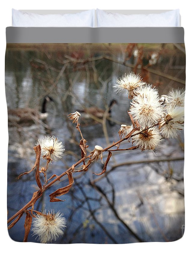 Thistles Duvet Cover featuring the photograph Thistles And Geese by Clay Cofer