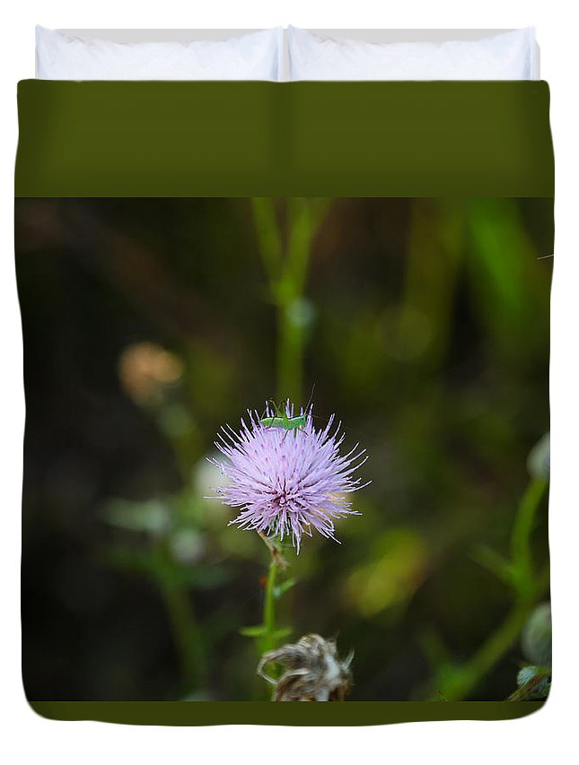 Tiny Grasshopper Duvet Cover featuring the photograph Thistles Morning Dew by Christopher L Thomley