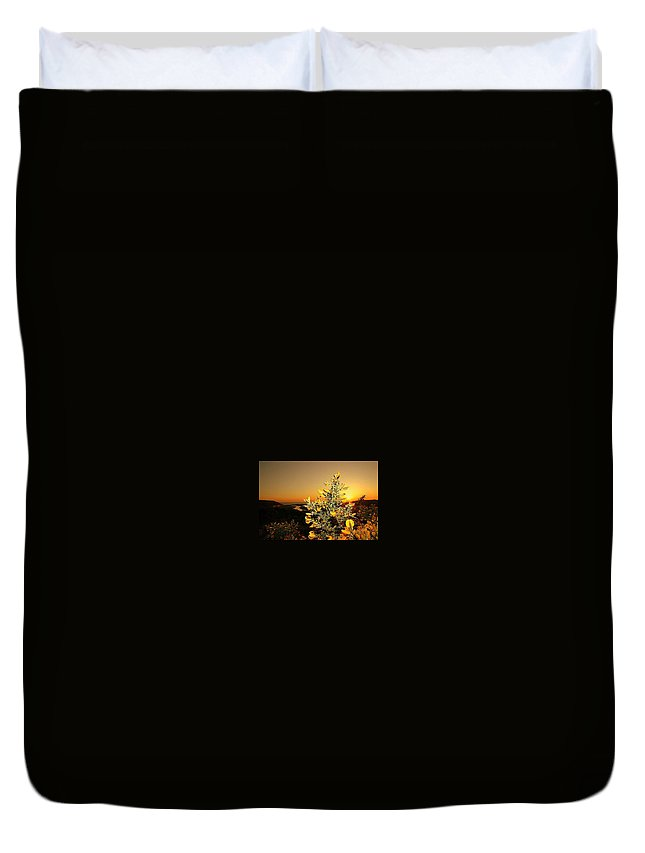 Duvet Cover featuring the photograph Thornbush by Janet Giles