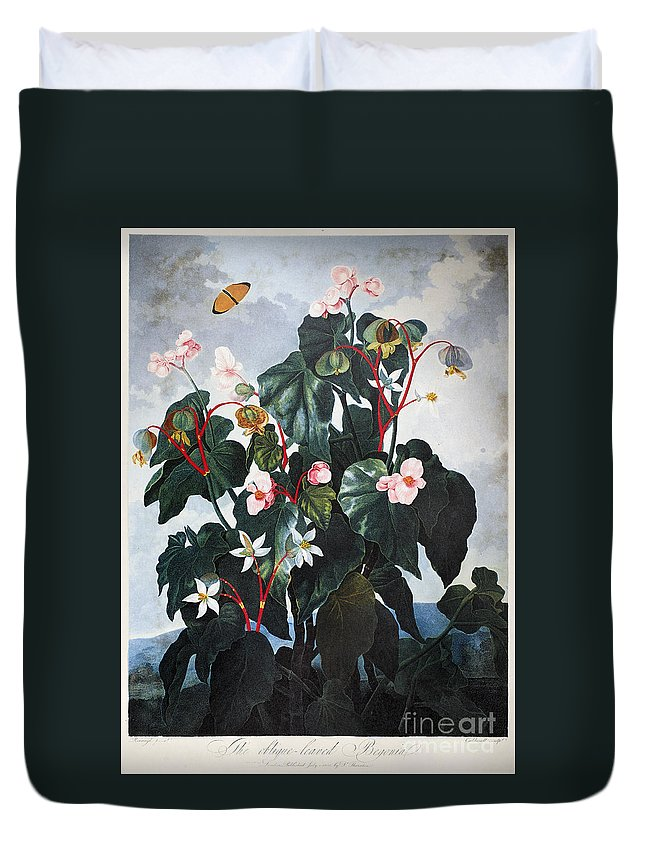 1800 Duvet Cover featuring the photograph Thornton: Begonia by Granger