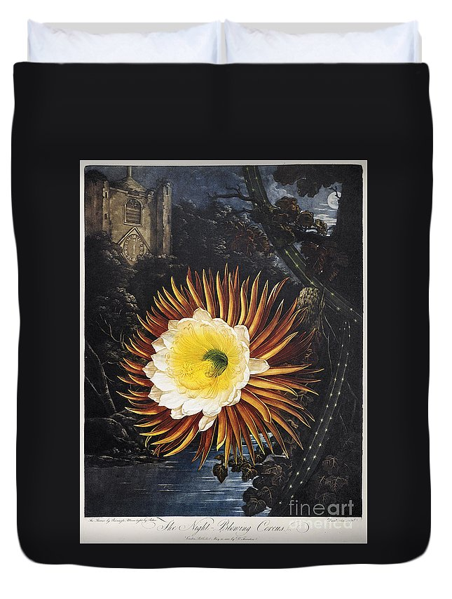 1800 Duvet Cover featuring the photograph Thornton: Cereus by Granger