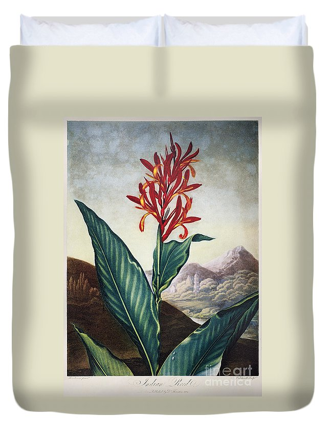 1804 Duvet Cover featuring the photograph Thornton: Indian Reed by Granger