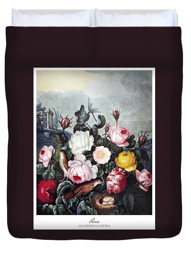 1805 Duvet Cover featuring the photograph Thornton: Roses by Granger