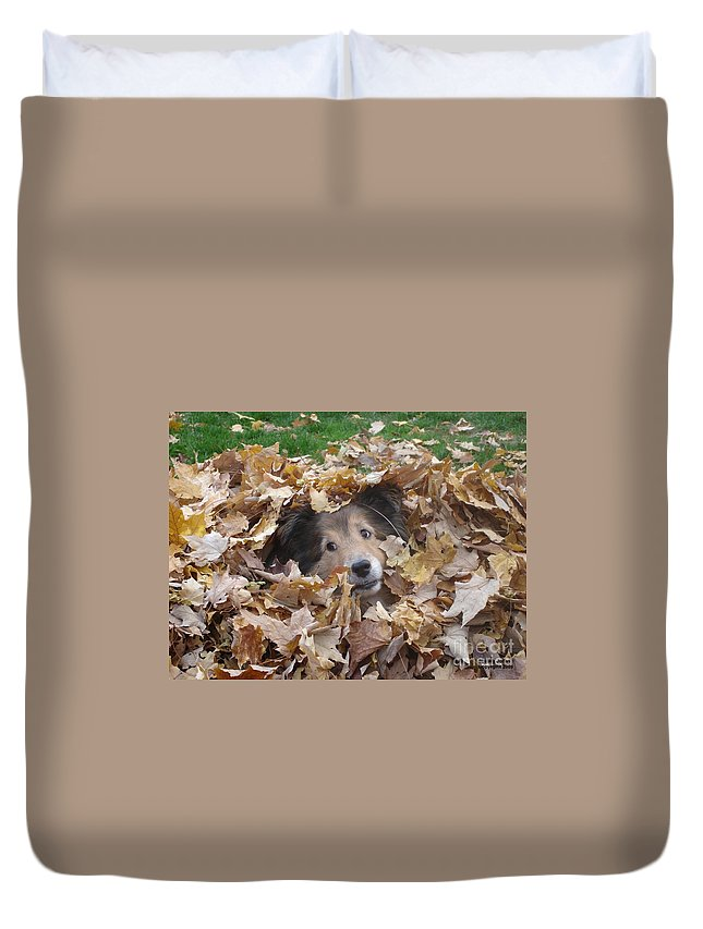 Dog Duvet Cover featuring the photograph Those Eyes by Shelley Jones