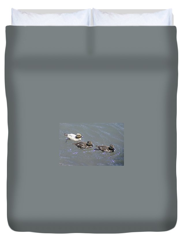 Fowl Duvet Cover featuring the photograph Three Duckies by Jeff Swan
