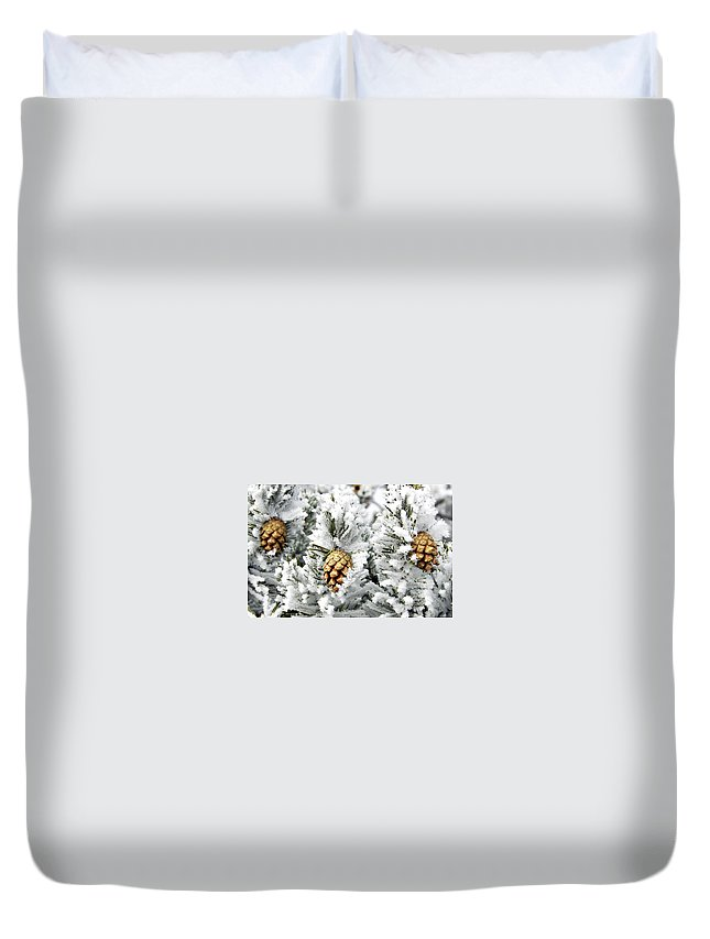 Frosty Duvet Cover featuring the photograph Three Pinecones by Marilyn Hunt