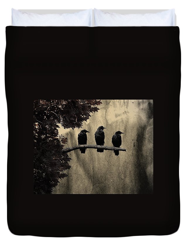 Dark Duvet Cover featuring the photograph Three Ravens Branch Out by Gothicrow Images