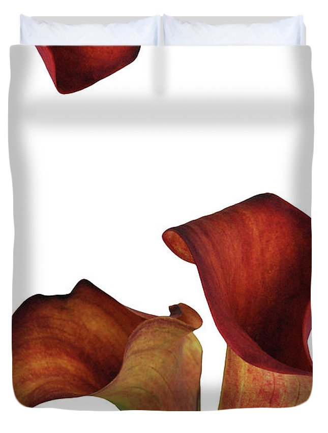 Rust Duvet Cover featuring the photograph Three Rust Calla Lilies by Heather Kirk