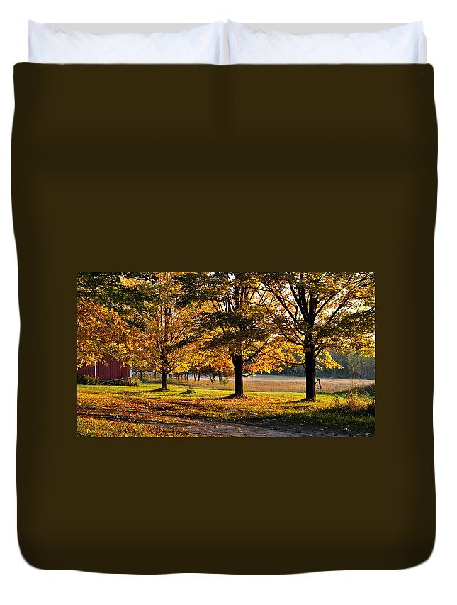 Fall Duvet Cover featuring the photograph Three Sisters by Tim Nyberg