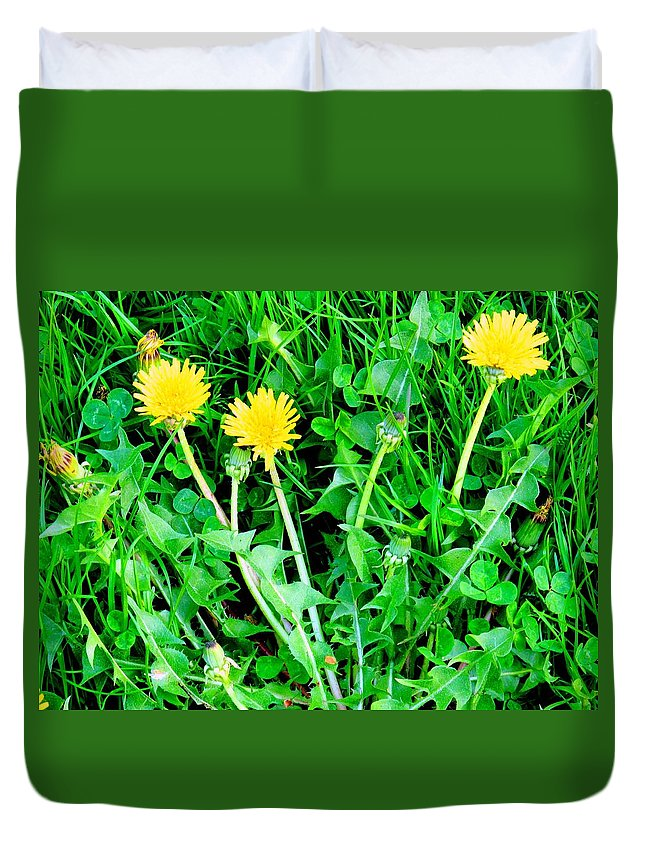 Dandylions Duvet Cover featuring the photograph Three Tenders by Ian MacDonald