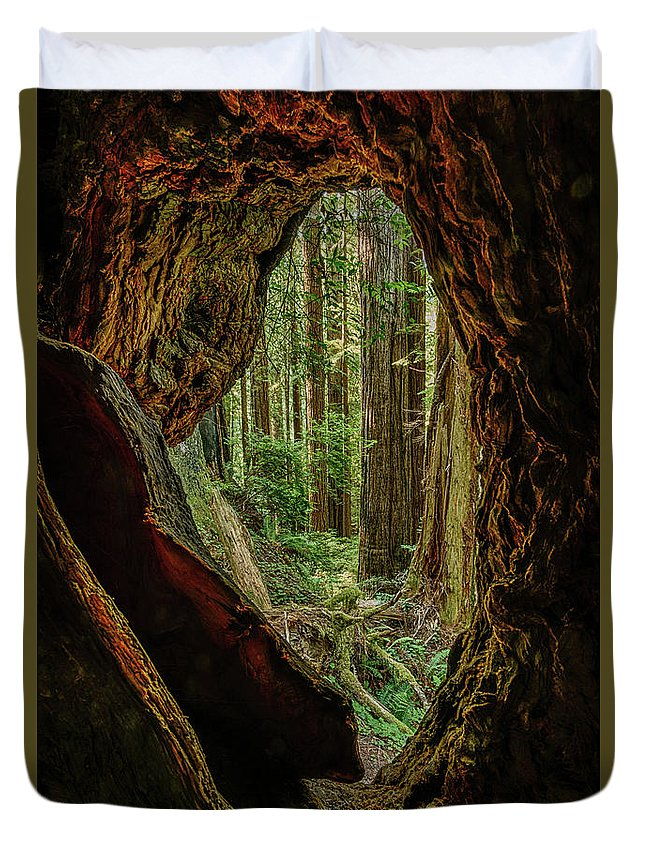 Charlie Choc Duvet Cover featuring the photograph Through The Knothole by Charlie Choc