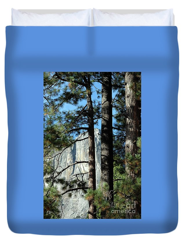 Trees Duvet Cover featuring the photograph Through The Trees by Kathleen Struckle